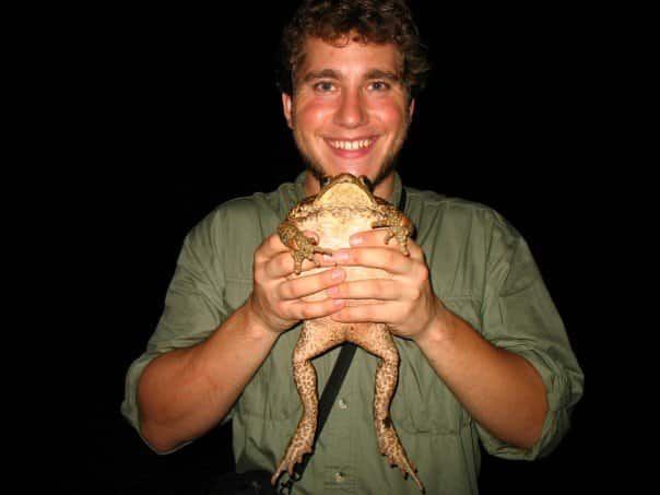 Cane toad in his hands