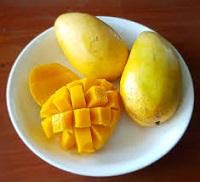 Mango in India